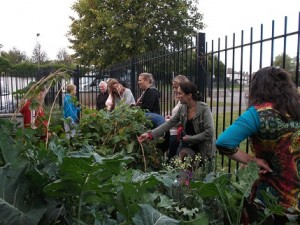 Garden committee showing parents the fruit and vegetable area