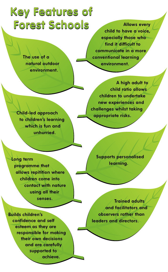 features of forest sch...